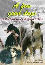 A few good dogs cover sheepdogs at work